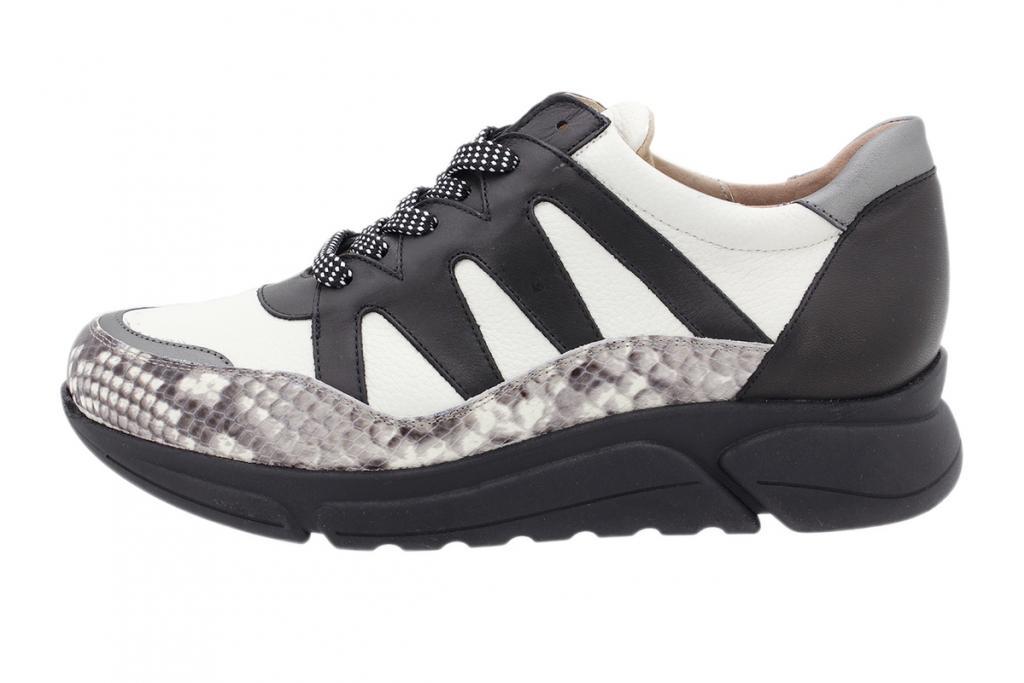 Sneaker Ice Snake 205763