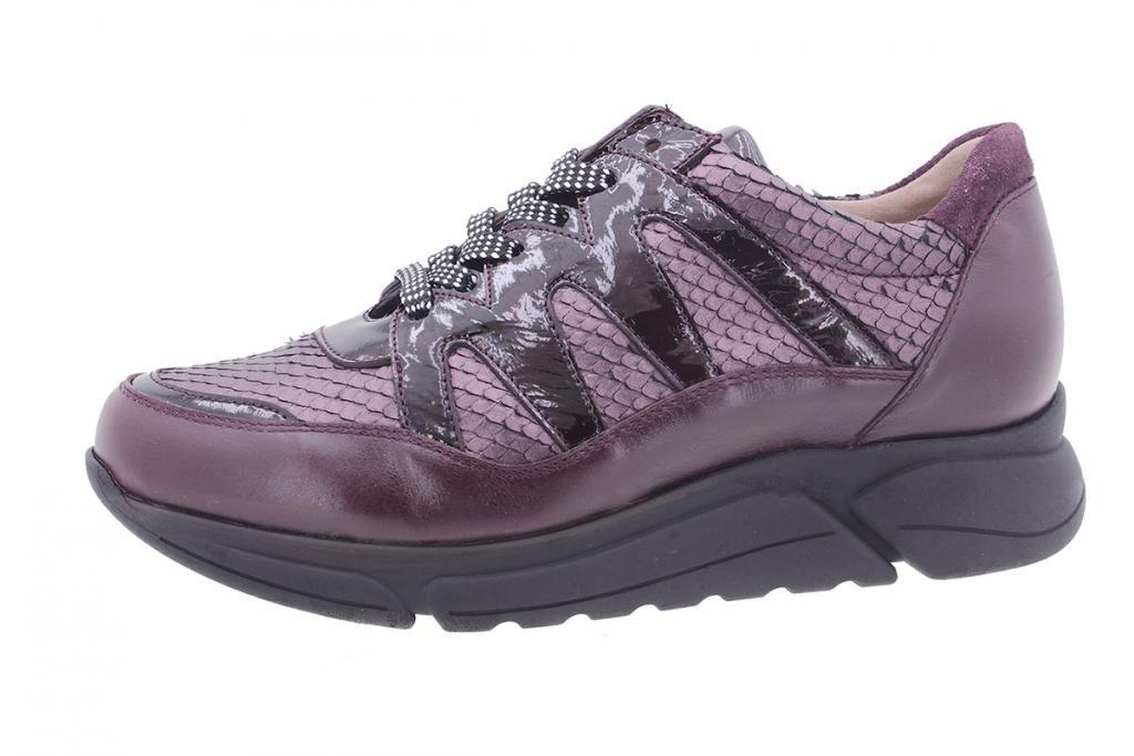 Sneaker Bordeaux Leather 205763
