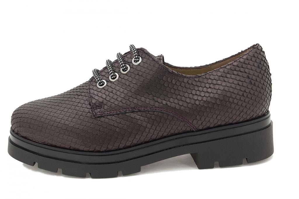 Lace-up shoe Bordeaux Snake 215675
